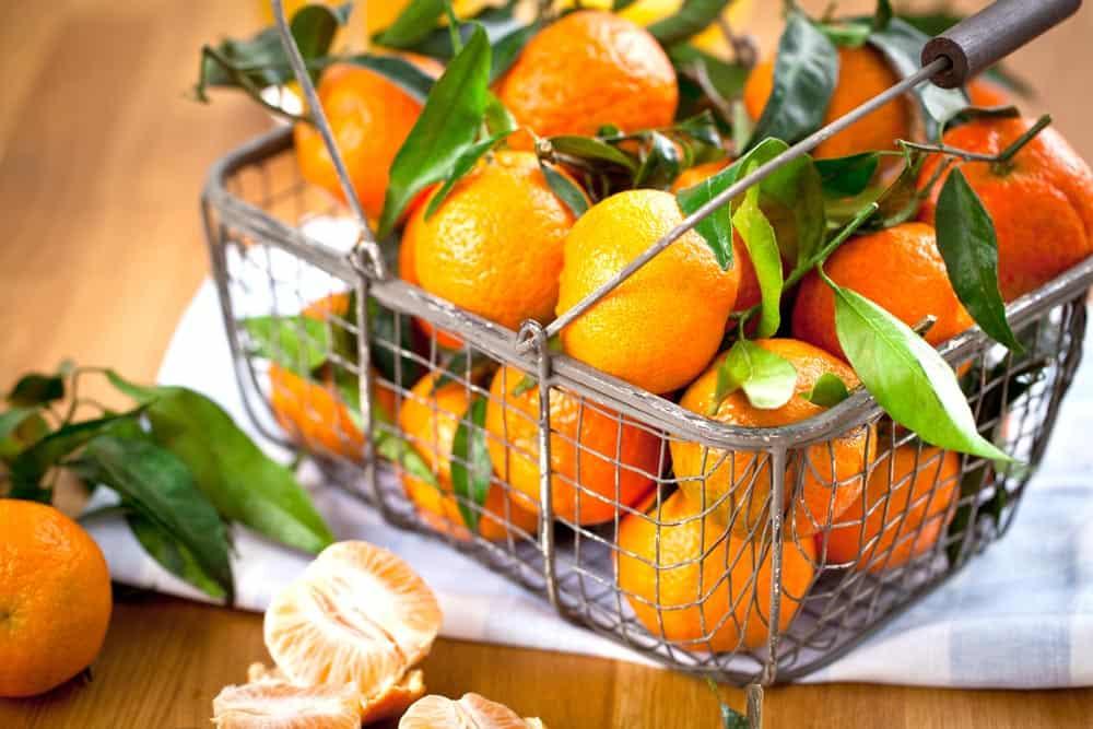 Orangen lagern, was du wissen musst